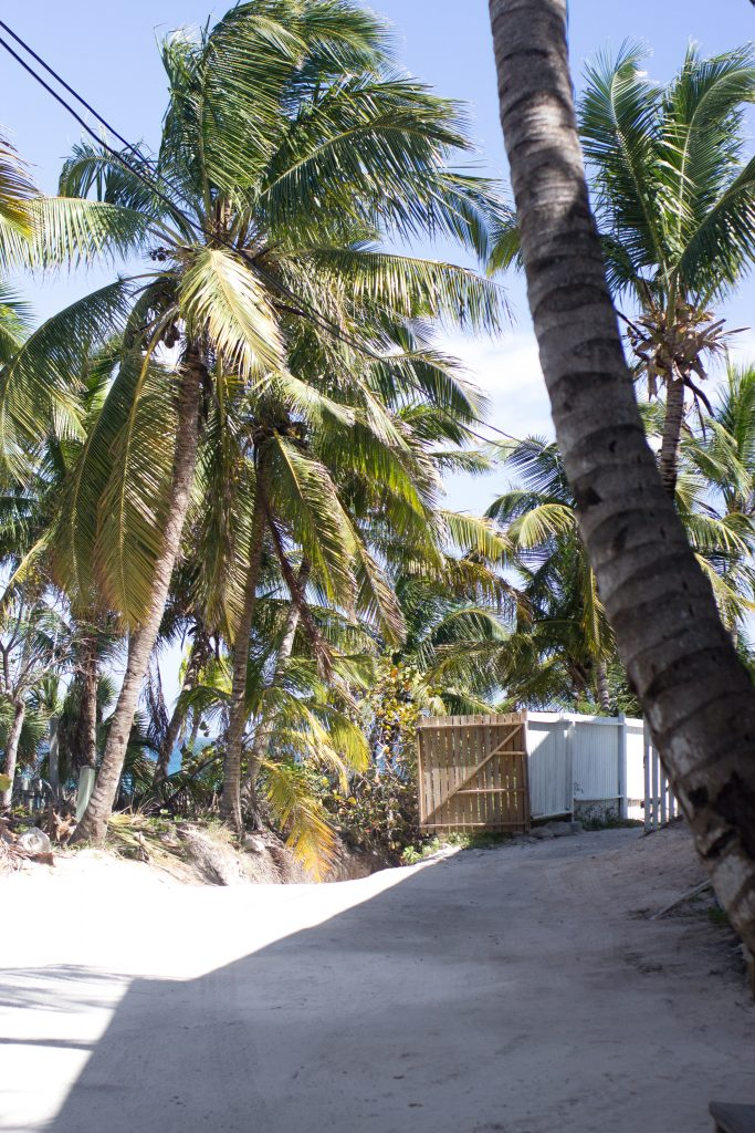 Photo Diary: The Bahamas