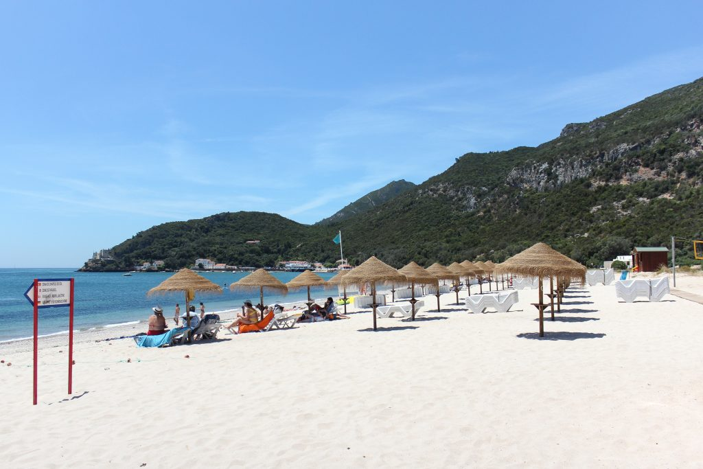 Rows of straw umbrellas on a white sandy beach with tall green mountains in the background in the Arrábida Natural Park